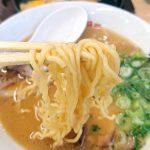 ラーメン横綱 松阪店 麺