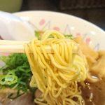 和歌山ラーメン のりや食堂 ラーメンの麺